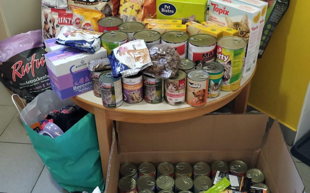 Dobrodelna akcija zbiranja hrane in pripomočkov za brezdome živali